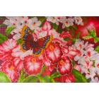 Рисунок на канве МП (37*49 см) 1138 «Орхидеи»