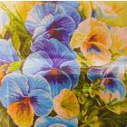Рисунок на канве МП (41*41 см) 1247 «Голубые россыпи» (цветы)