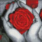 Алмазная мозаика Подсолнух UC145 «Роза в ладонях» 20*20 см на подрамнике