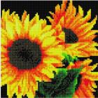 Алмазная мозаика Подсолнух UC216 «Подсолнечники» 20*20 см на подрамнике