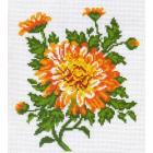 Рисунок на канве МП (20*22 см) 0479 «Хризантема»