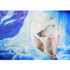 Рисунок на канве Гамма ММ-3086 «Белый медведь» 28*42 см