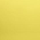 Кожа искусственная 20*30 см 28449 0,5 мм  желтый  (уп 2 листа) 541148