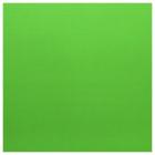 Кожа искусственная 20*30 см 28452 0,5 мм  зеленый  (уп 2 листа) 541149