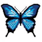 Набор для вышивания Нитекс 2394 «Бабочка голубая Морфо» 22*22 см
