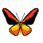 Набор для вышивания Нитекс 2398 «Тигровая бабочка» 22*22 см