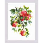 Набор для вышивания Риолис №1938 «Наливные яблочки» 30*40 см