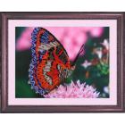 Ткань для вышивания бисером Butterfly 102 «Бабочка» 25*34 см