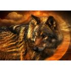 Алмазная мозаика DIY O-567 «Волк»