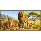 Алмазная мозаика DIY R-725  «Львиное семейство»