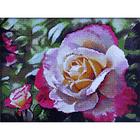 Алмазная мозаика H 3645 «Бело-розовые розы»