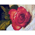 Алмазная мозаика H 3660  «Роза на нотах»