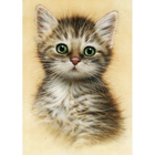 Алмазная мозаика Milato № 261  «Портрет котенка»