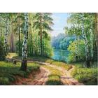 Алмазная мозаика АЖ-1332 «Дорога среди берез» 30*40 см