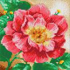 Алмазная мозаика АЖ-1444 «Цветущий пион» 20*20 см