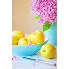 Алмазная мозаика Гранни AG0214 «Сирень и яблоки» 38*48 см