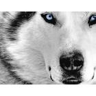Алмазная мозаика Гранни AG0436 «Волк»