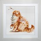Набор для вышивания Luca-S В2270 «Кошка со стрекозой» 22,5*22 см