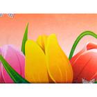 Алмазная мозаика с рамкой №6 «Тюльпаны» 17*22  см